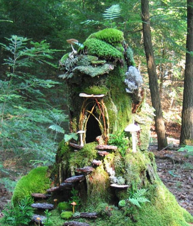 learning landscape designing  fairy garden