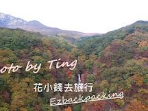 關東日光紅葉速報 - 霧降高原、霧降瀑布(2016年11月初)
