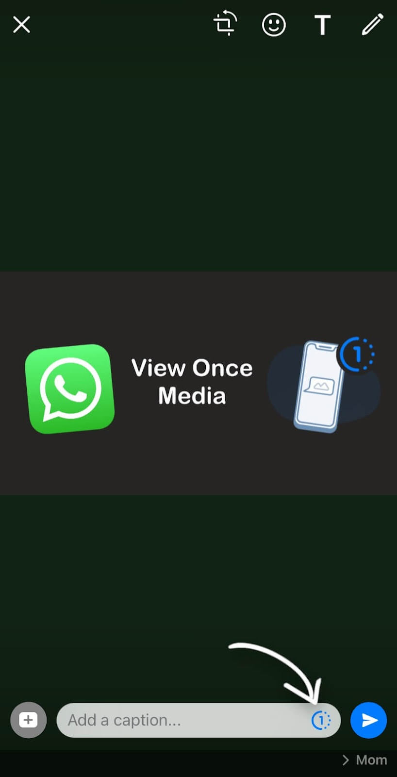 Send view once media on WhatsApp for iPhone