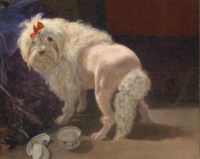 Anton Schrodl, Poodle