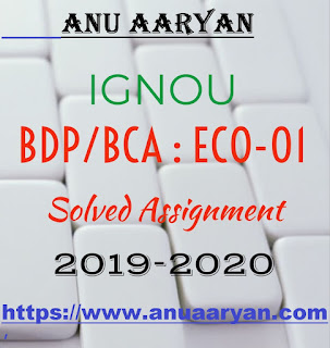 IGNOU ECO-01 Business Organization SOLVED ASSIGNMENT 2019-20