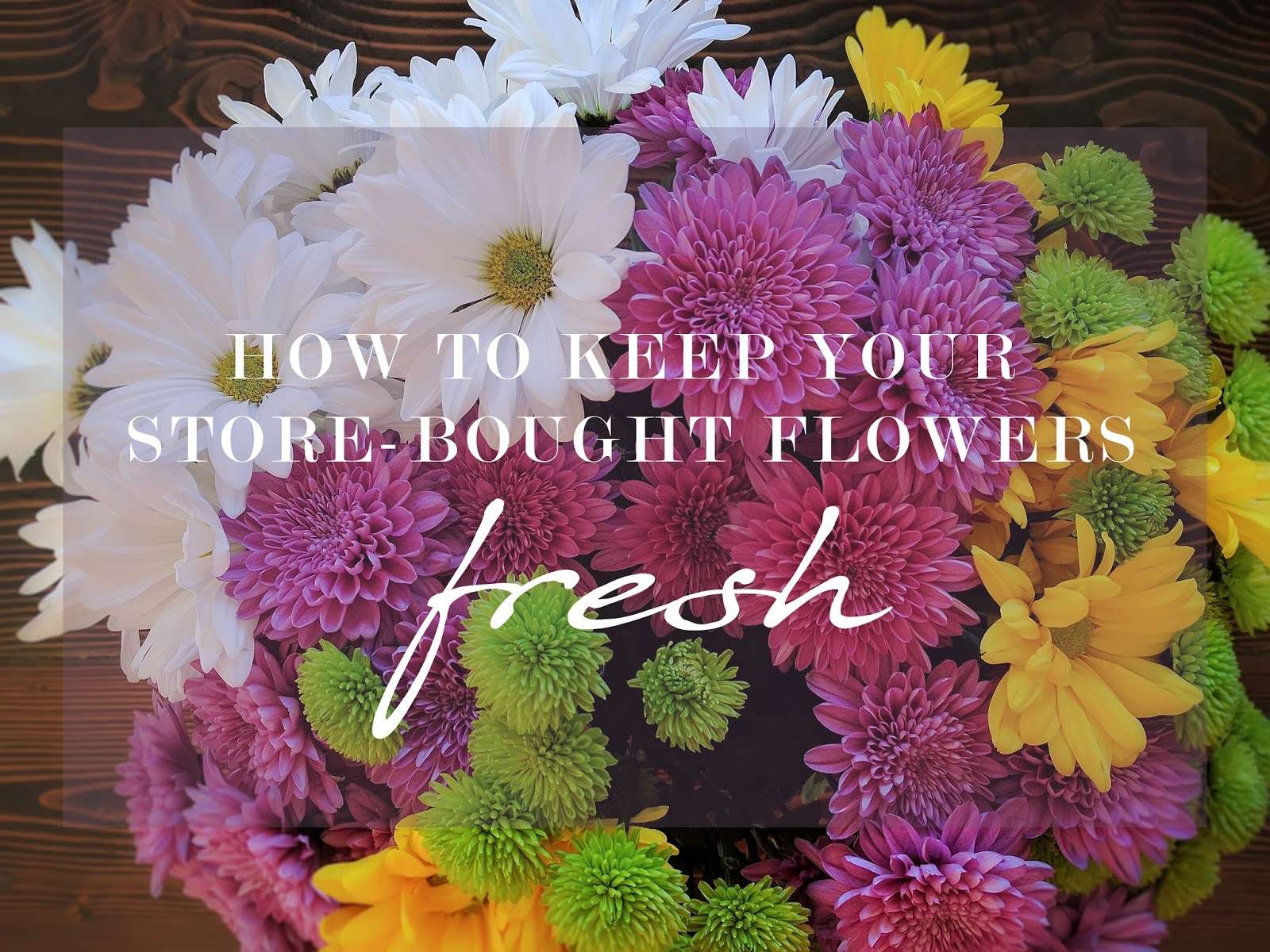 itsAlyx How to Keep Store Bought Flowers Alive
