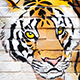 urban fauna prints