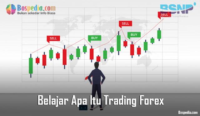 Belajar Apa Itu Trading Forex