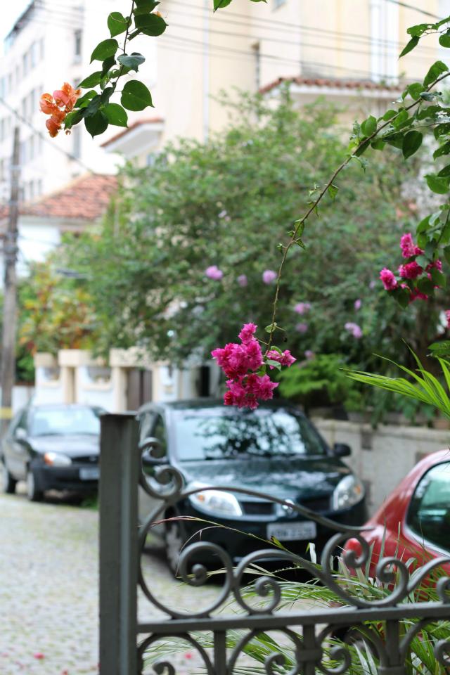Flores na Vila - Tijuca