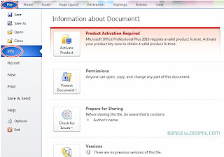 File info microsoft word 2010