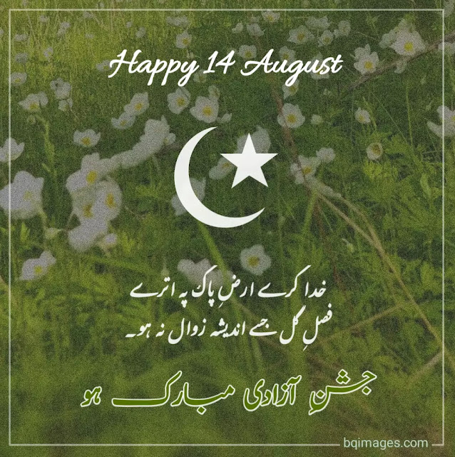 14 august dp pic