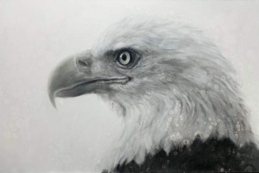 04-Bald-Eagle-David-Riley-www-designstack-co