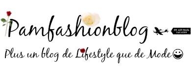 Pamfashionblog: Blog Mode et Lifestyle de Poitiers et d'ailleurs!