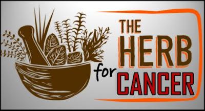 Ramuan Herbal Untuk Kanker