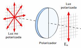 Resultado de imagen de polarización