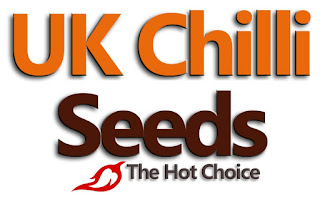ukchilliseeds.co.uk