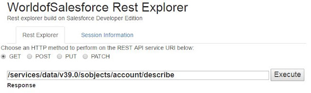 Salesforce Rest Explorer
