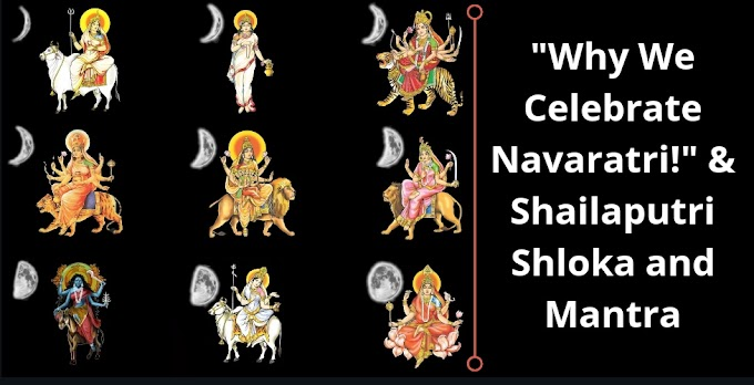 What is Navaratri celebration ?