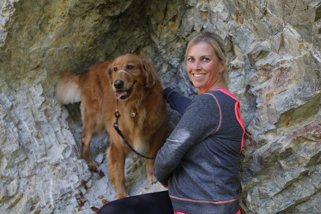 Miley golden retriever dog Hiking the Pequot Trails Lantern Hill Summit #walktober