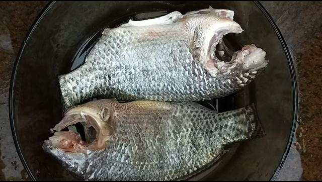 طريقة تنظيف سمك البلطي بطريقة سهلة بدون ظفارة الشيف محمد الدخميسي