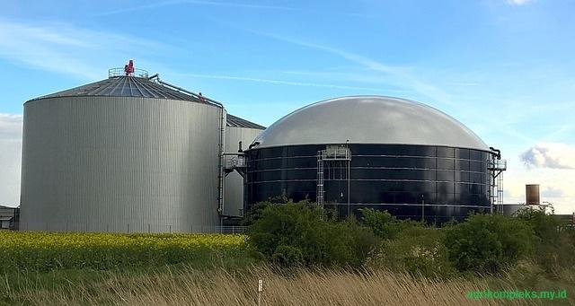 Energi Terbarukan Dari Sektor Peternakan