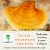 mushroom of immortality