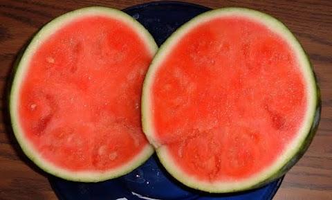 SEEDLESS FRUIT