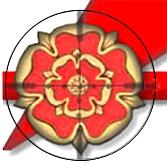 Rifles modificados para Field Target