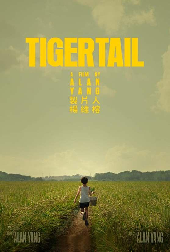 مشاهدة مشاهدة فيلم Tigertail 2020 مترجم