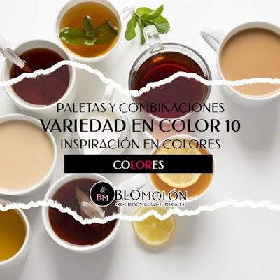 Variedad En Color 10 Paletas