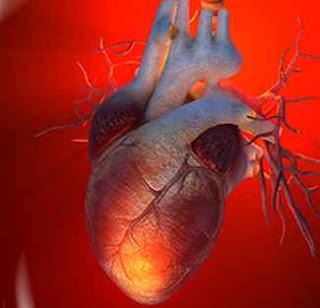 kalp yetmezliği
