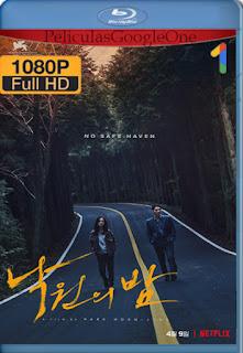 Noche en el paraíso (Night in Paradise) (2020) [1080p Web-DL] [Latino-Coreano] [LaPipiotaHD]