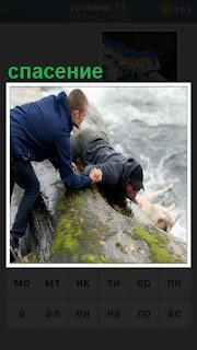 двое мужчин на берегу занимаются спасением собаки из воды