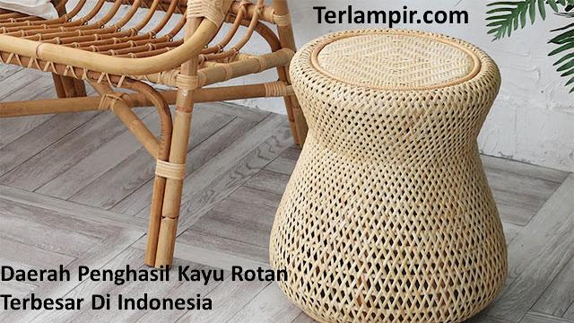 Indonesia merupakan negara penghasil rotan terbesar di dunia