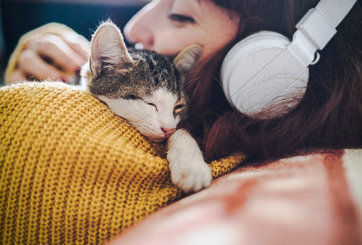 Cats and dogs have been more important than human family members during the pandemic?