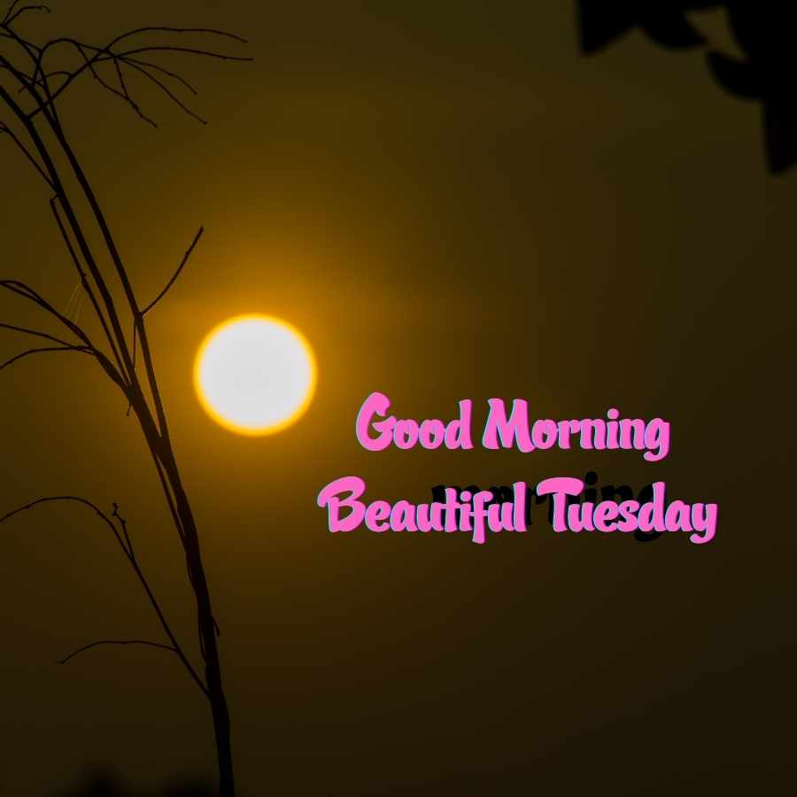 good morning images of tuesday