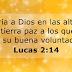 Lucas 2:14