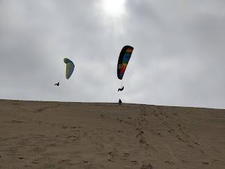 Paragliders over Cape Kiwanda dune.