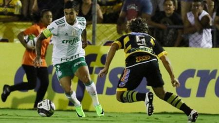 Assistir Novorizontino x Palmeiras ao vivo grátis em HD 11/11/2017
