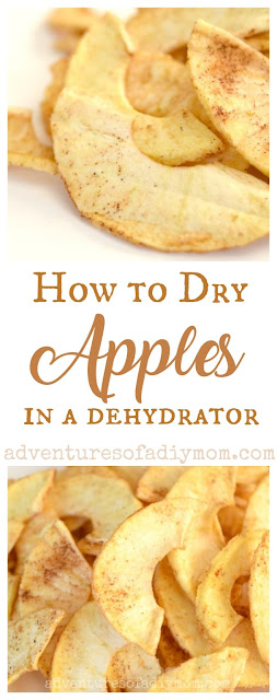 How to dry apples in a dehydrator