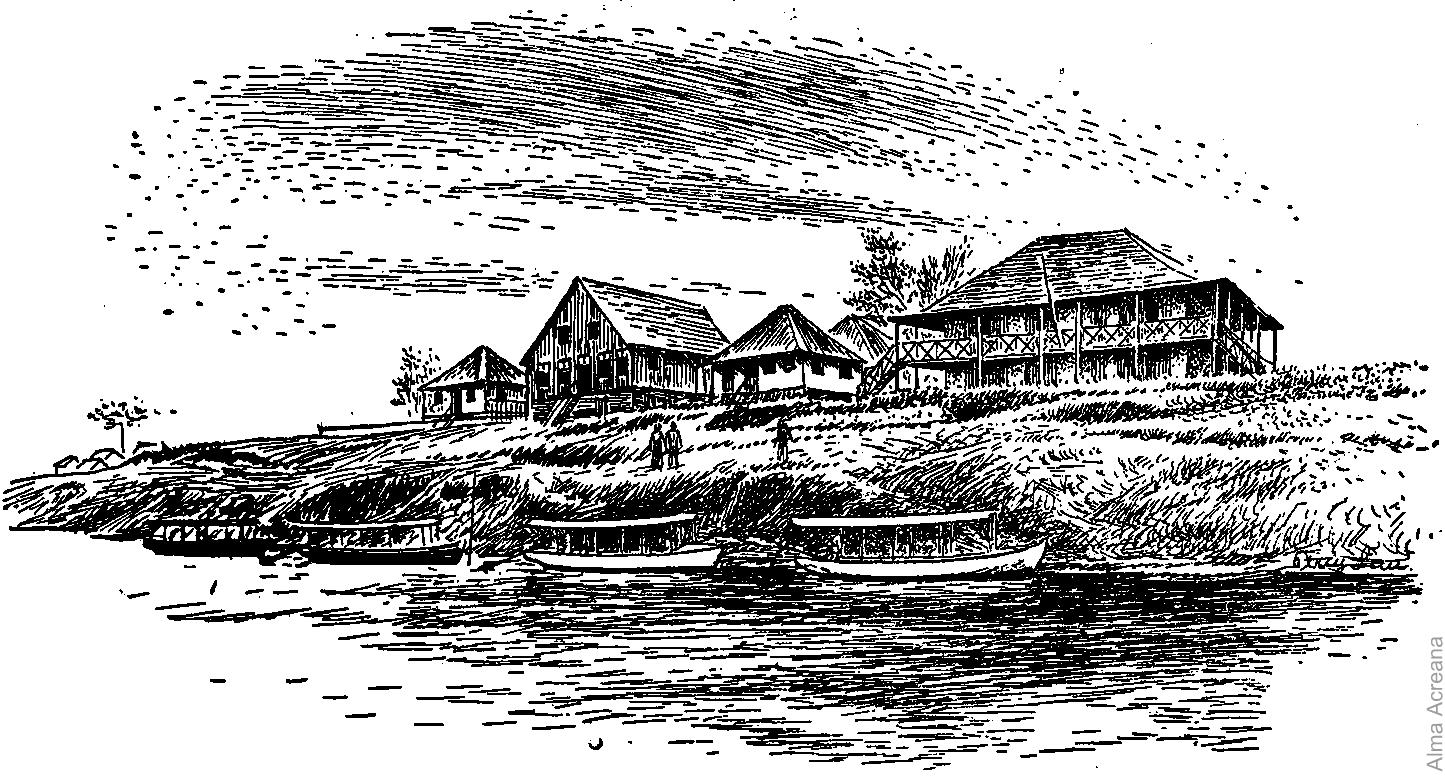 Seringal Foz do Muru (desenho de Percy Lau)