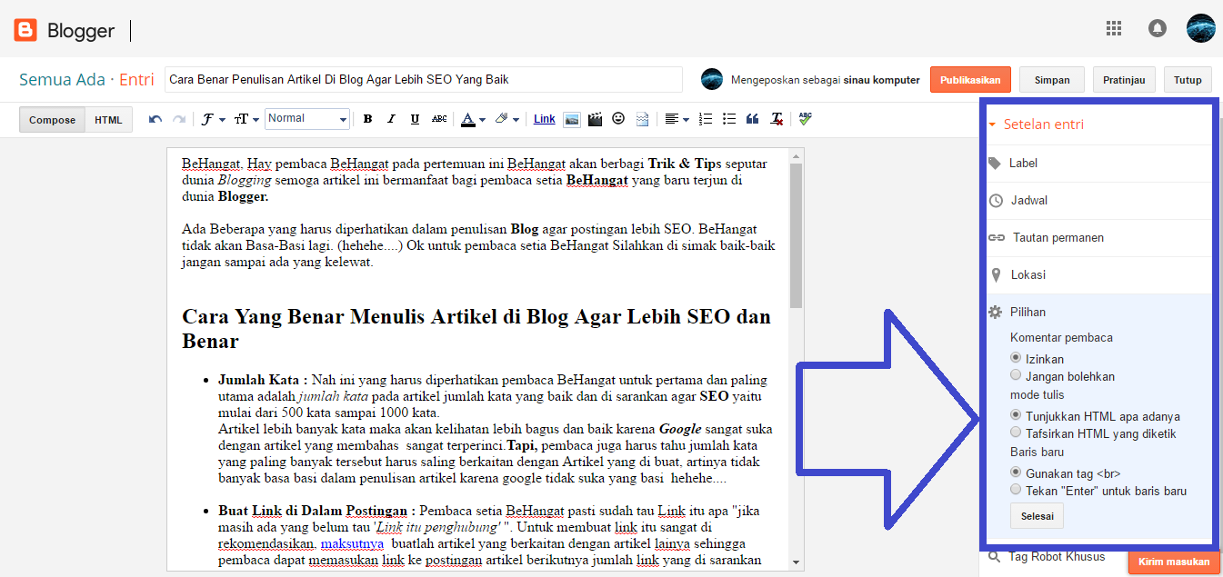 Cara Benar Penulisan Artikel Di Blog Agar Lebih SEO Yang Baik - BeHangat.Net