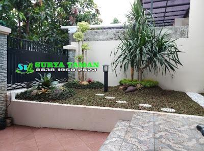 Tukang Taman Dramaga Bogor - SuryaTaman