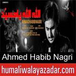 https://www.humaliwalyazadar.com/2018/09/ahmed-habib-nagri-nohay-2019.html