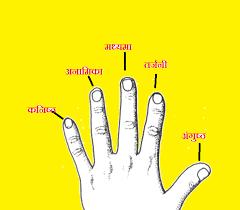 मध्यमा अंगुली - Samudrik Vigyan