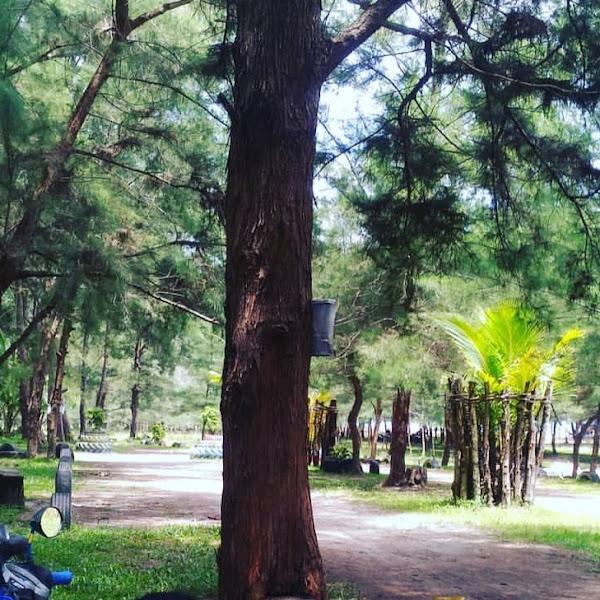 Pantai pandan wangi Muko-Muko cocok untuk liburan bareng keluarga dan teman-teman
