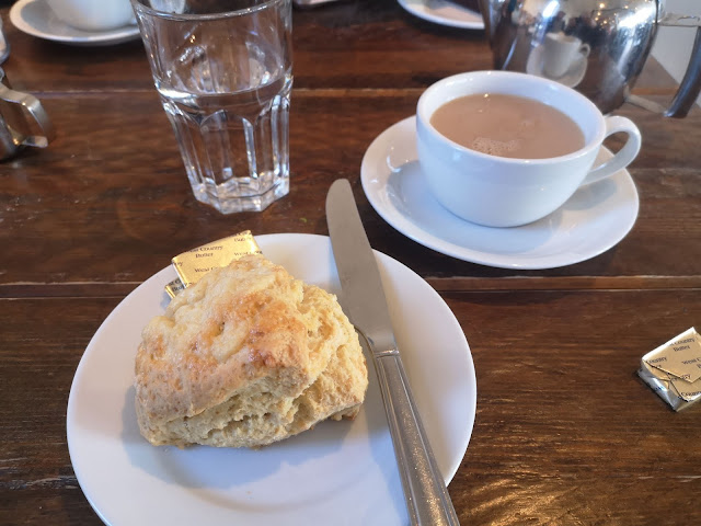 Cheese scone and tea