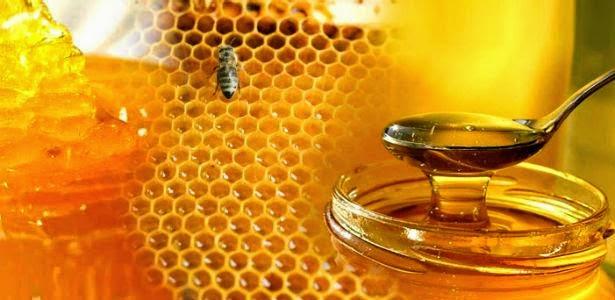 khasiat madu dan se7en