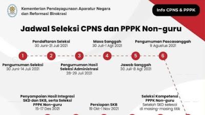 Tahapan atau Alur Jadwal Seleksi CPNS, PPPK Non Guru dan PPPK Guru
