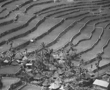 Dampak Kerusakan Tanah Bagi Kehidupan Usaha Mengurangi