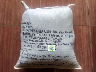 Benih padi yang dibeli     AJIM Karawang, Jabar.  (Setelah packing karung ).