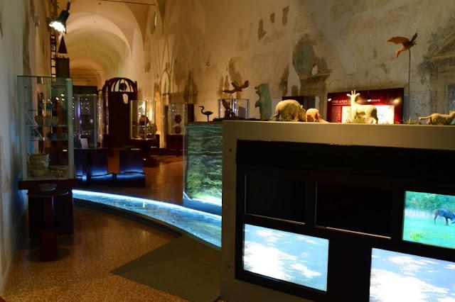 MUSEO-DEI-GRANDI-FIUMI-ROVIGO