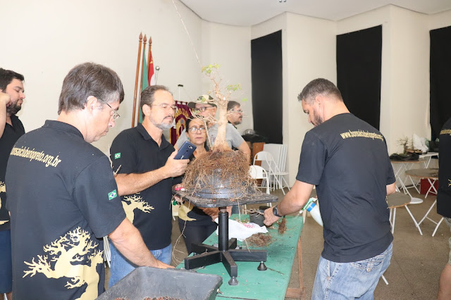 Lions sedia workshop de bonsai, a arte japonesa de cultivar miniaturas de árvores