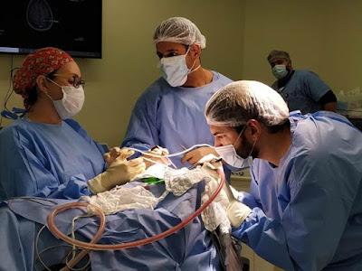 HRR realiza primeira neurocirurgia com estimulação cerebral do Vale do Ribeira